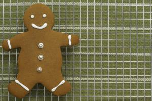 30877724 gingerbread boy
