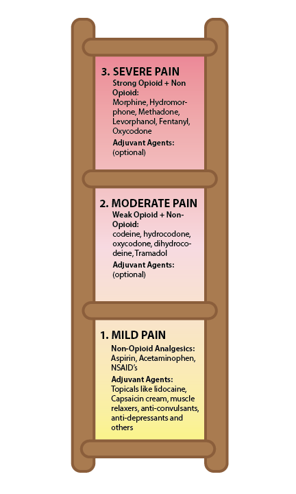 A pain ladder shows the kinds of medicines used to treat mild, moderate and severe pain.